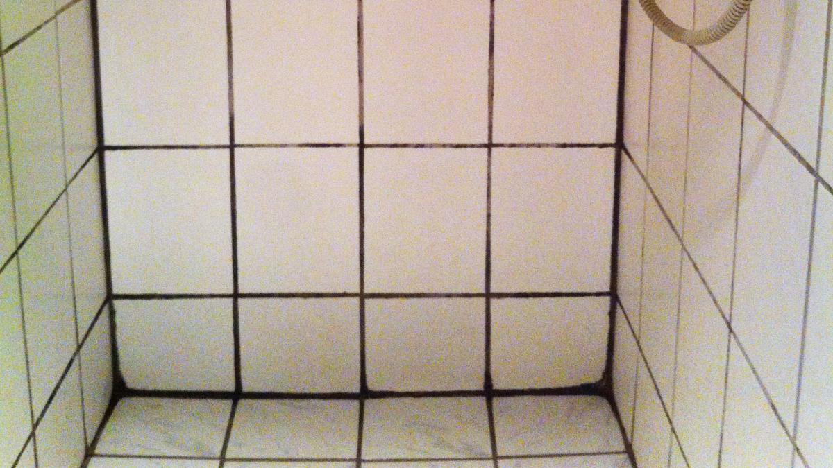 rengøring badeværelse Sådan får du bugt med sorte fuger i brusekabinen | Samvirke rengøring badeværelse