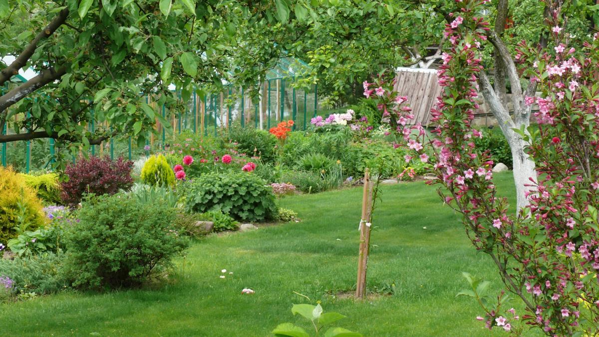 10 gør-det-selv-tips til haven og altanen  Samvirke