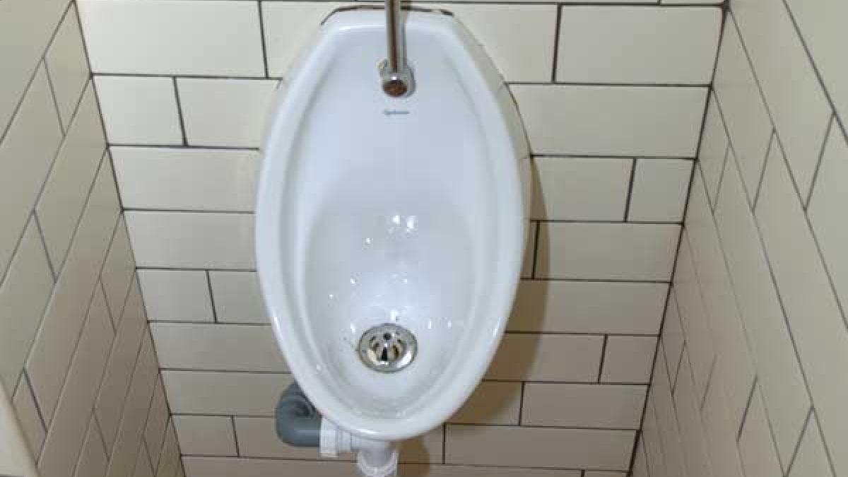 Når en kvindespuds er urin