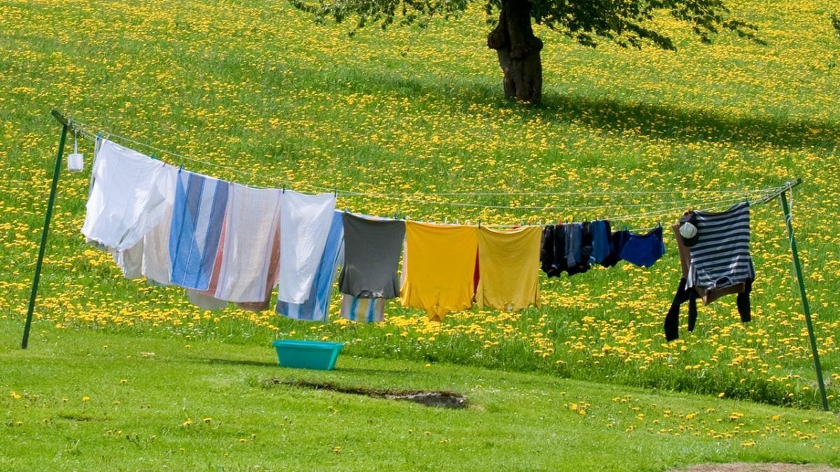 Her er det perfekte vejr at tørre tøj i | Samvirke