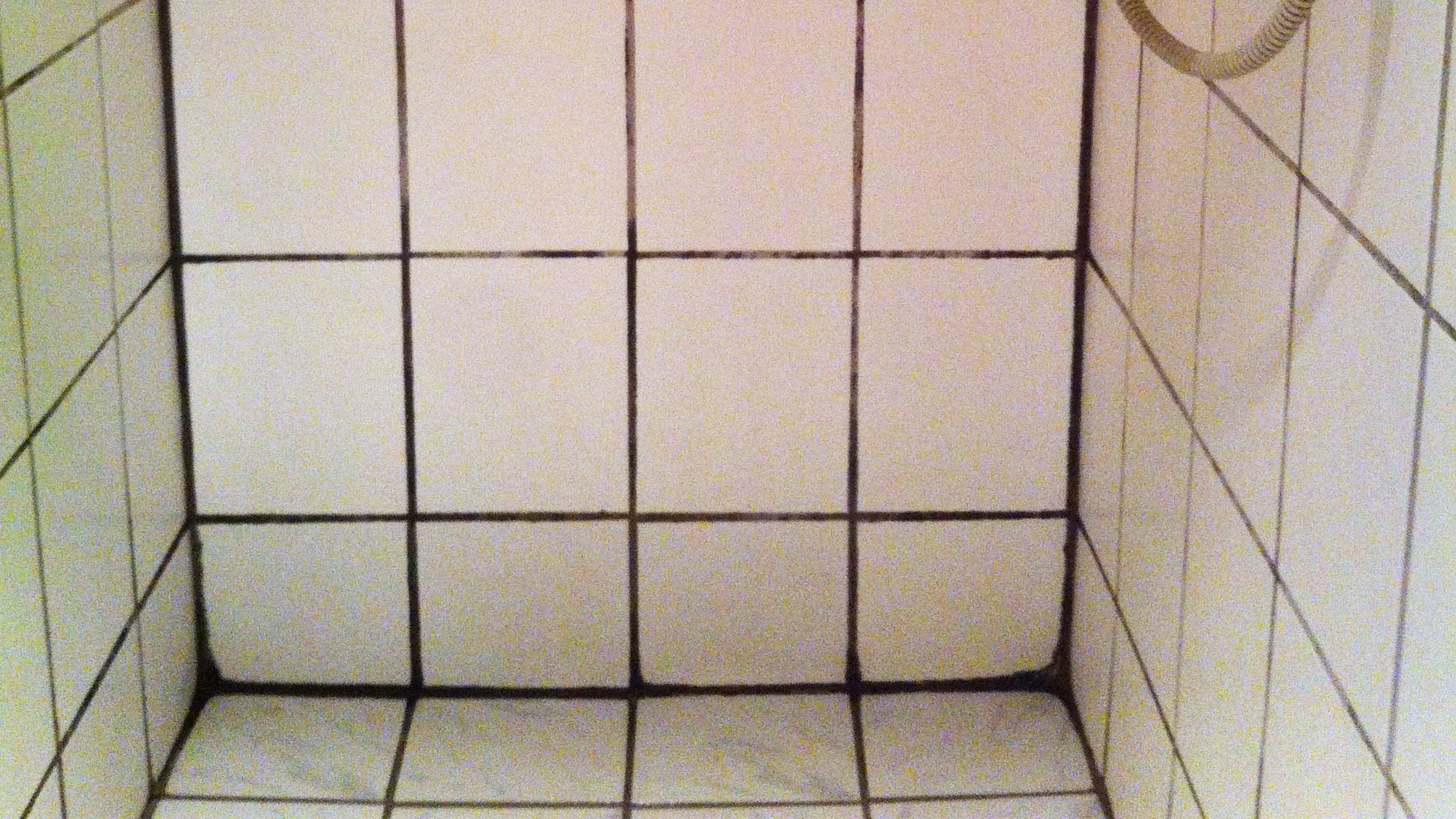 rengøring brusekabine Sådan får du bugt med sorte fuger i brusekabinen | Samvirke rengøring brusekabine