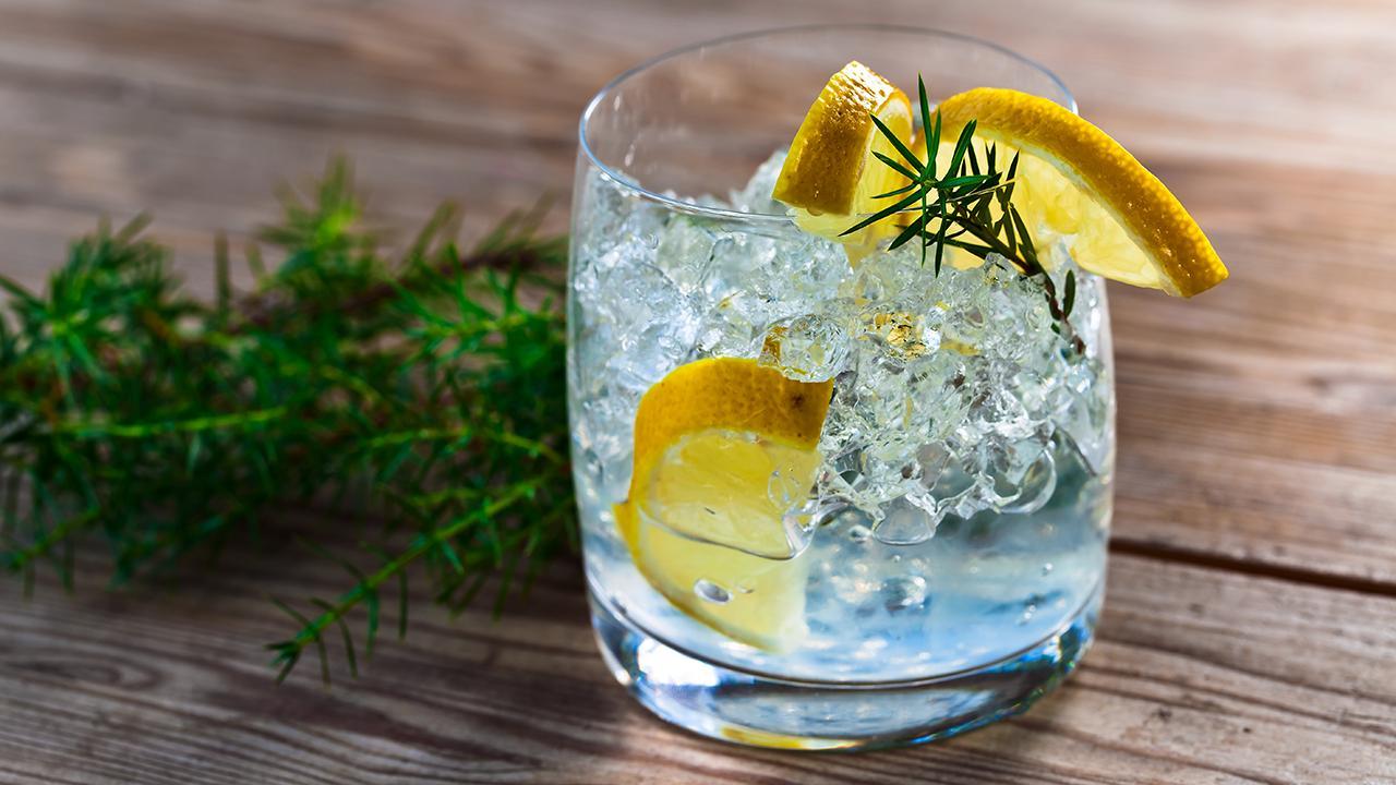 Efterstræbte Sådan gør du din gin og tonic helt speciel | Samvirke NJ-09