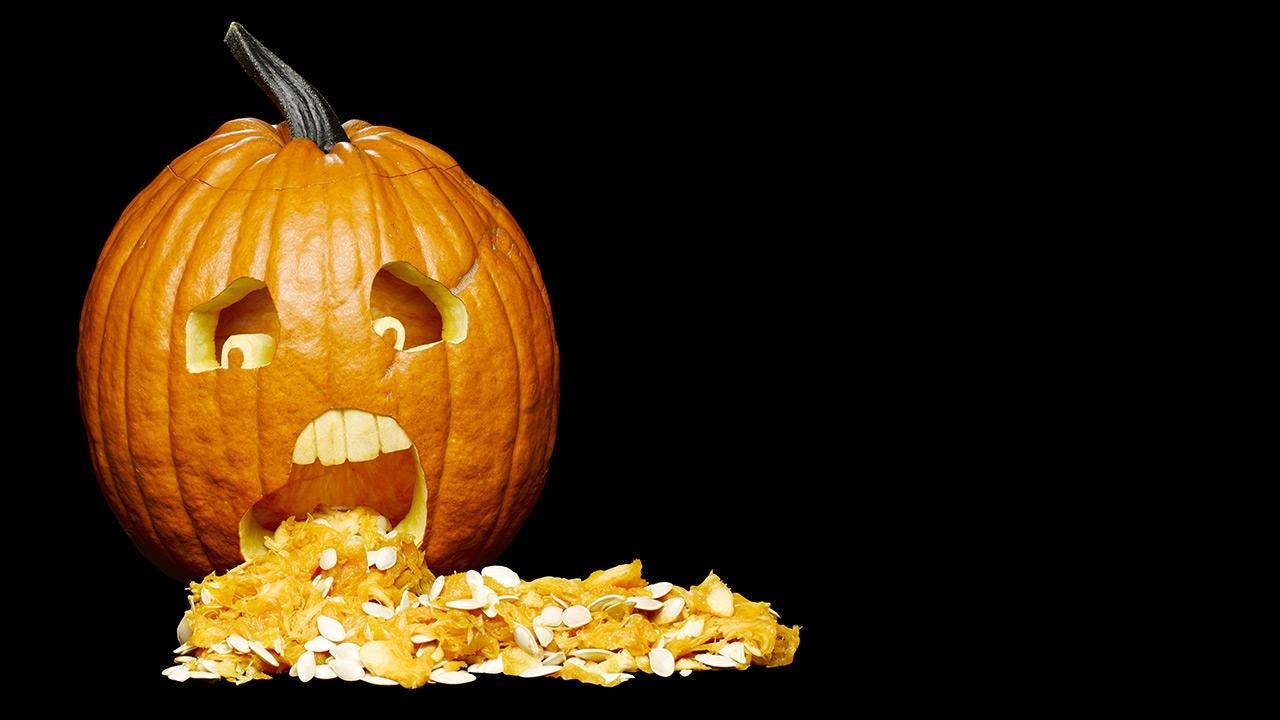 halloween græskar holdbarhed