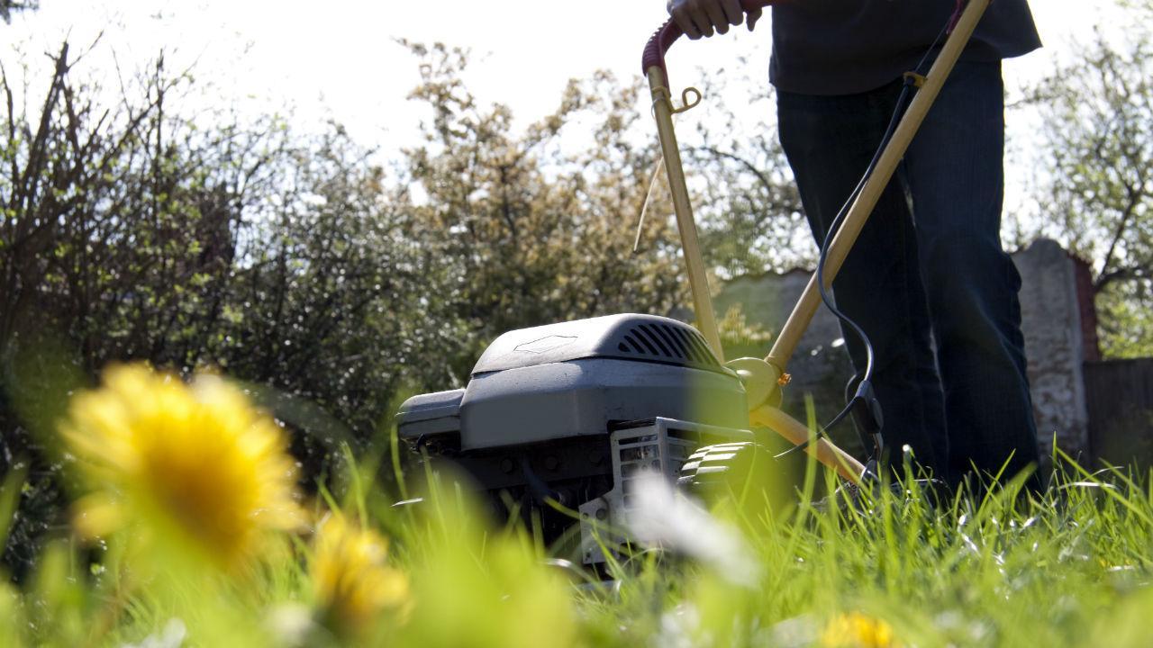 hvornår kan man gøde græsplænen