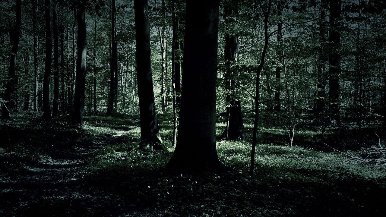 mørke