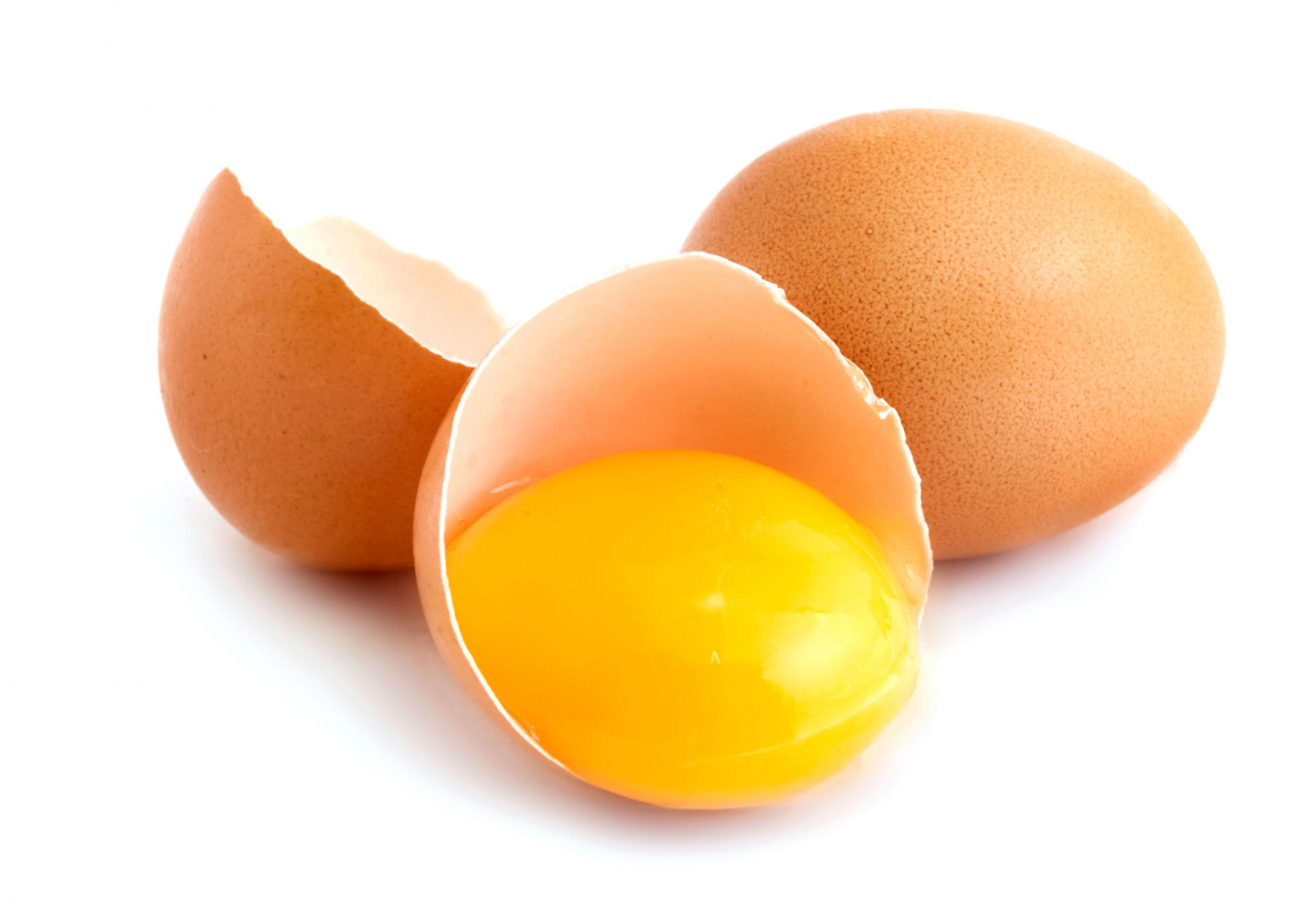 salmonella æg symptomer