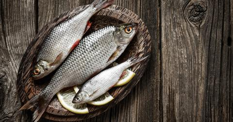 dating site bedre end masser af fisk lunchtid dating